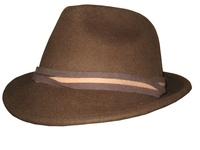 Brown Wool Fedora with a Twisted Band