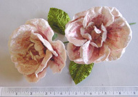Flat Velvet Blossom By 2 Great Hat Trim